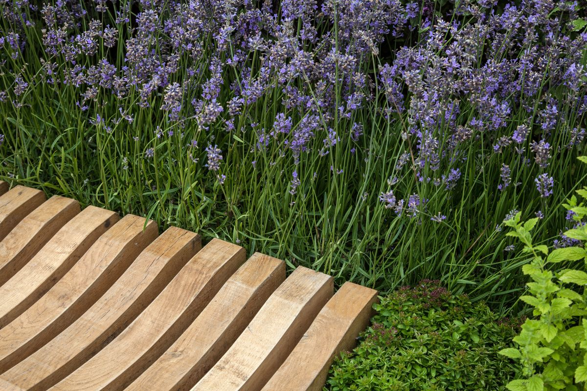 Make sure there's a path that offers access to the bench when the ground is wet or slippery