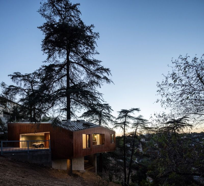 The house is mostly cantilevered over the edge of the hillside, with a big tree growing right through it