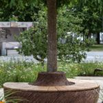 Seating around the tree - teak wood