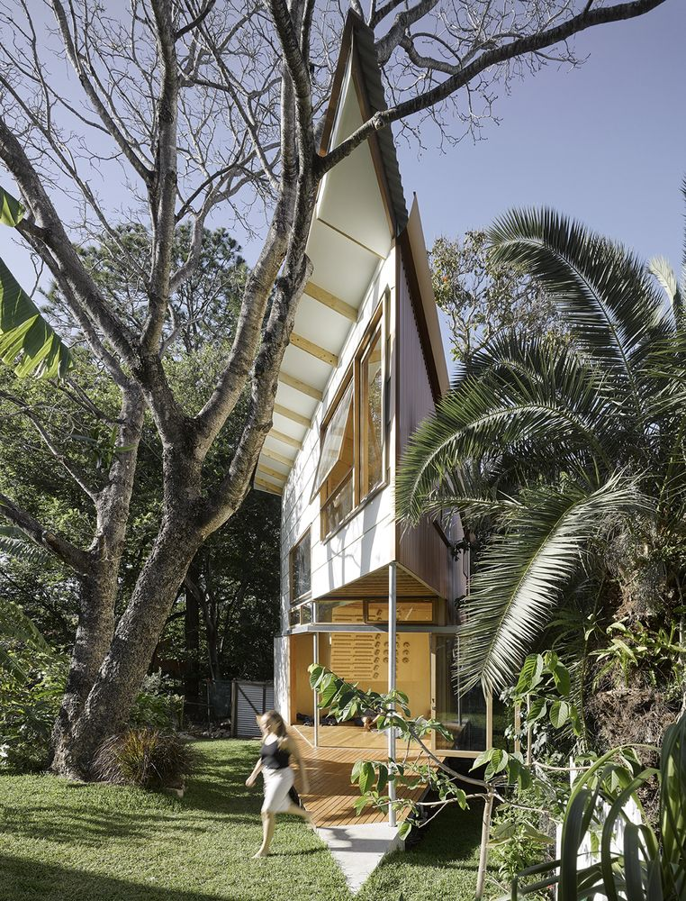 The structure was shaped by the garden and the large tree that sits next to it