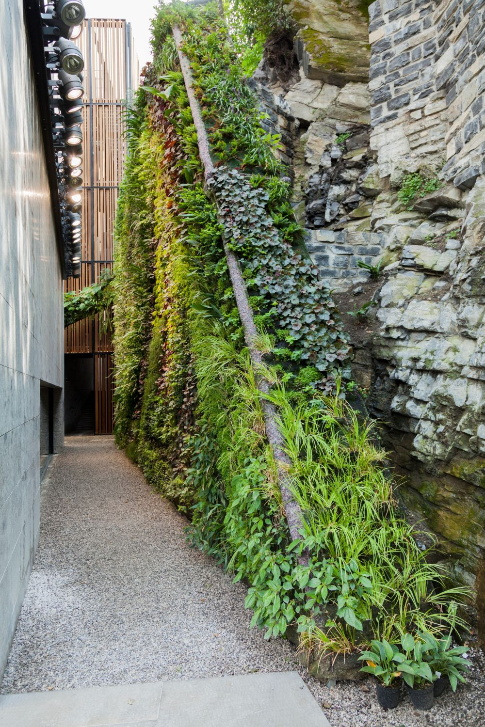 A vertical garden transforms any space into a lush environment.