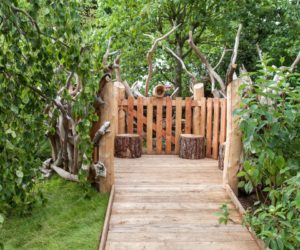 Wood pathway to a stump seating space