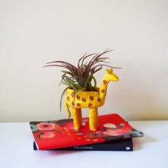 Clay Giraffe planter project