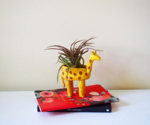 Clay Giraffe Planter DIY with Kids in Mind