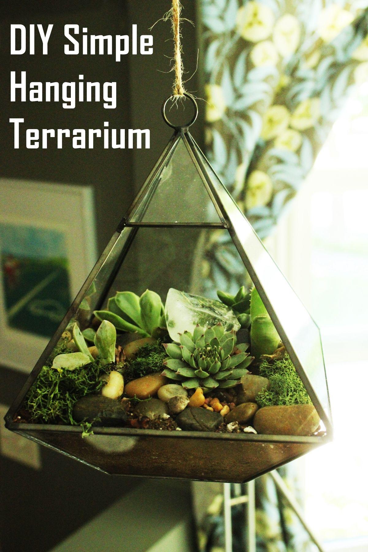 diy terrarium simple easy and modern greenery. Black Bedroom Furniture Sets. Home Design Ideas