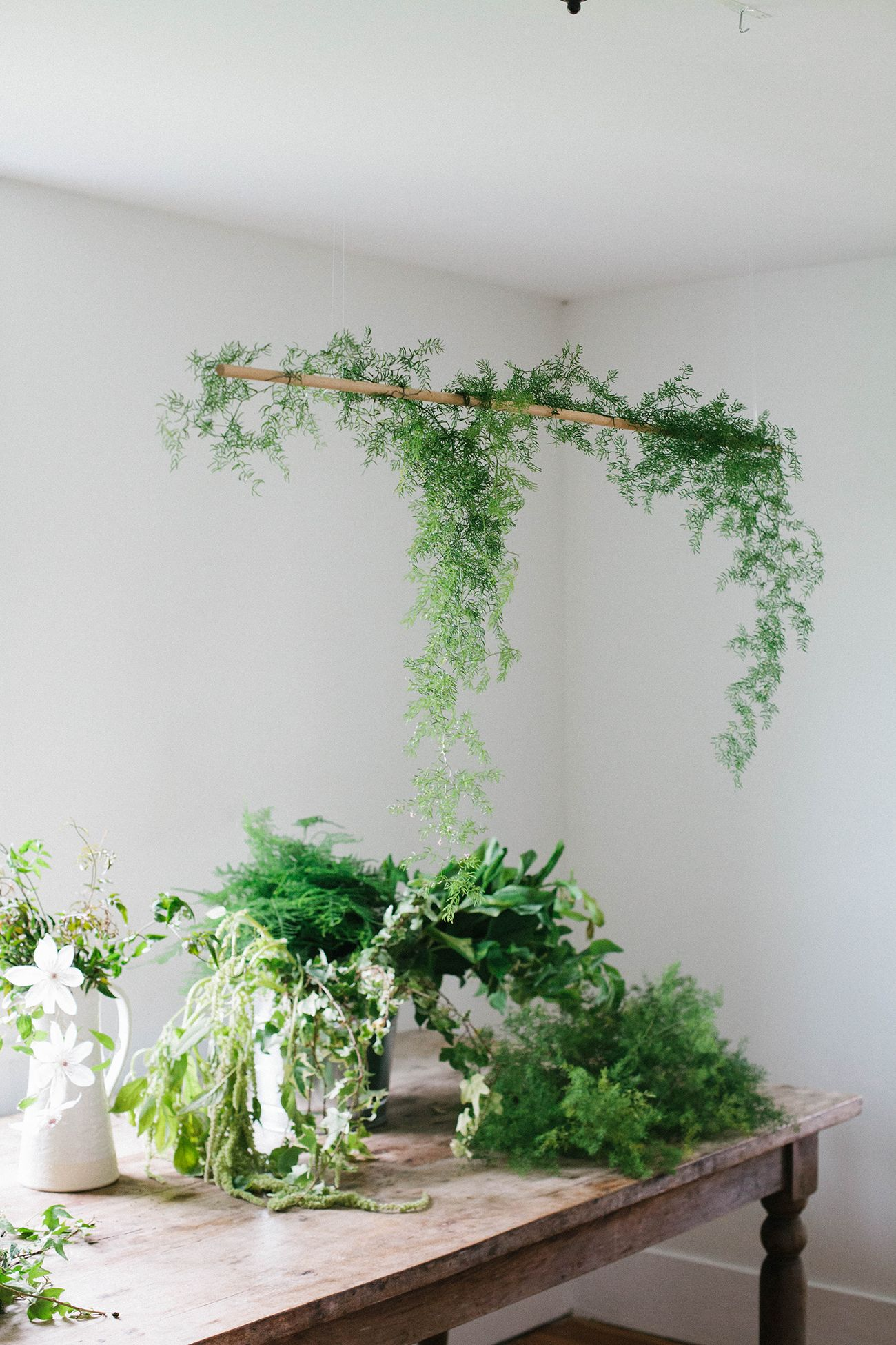 Green plants hanging over table