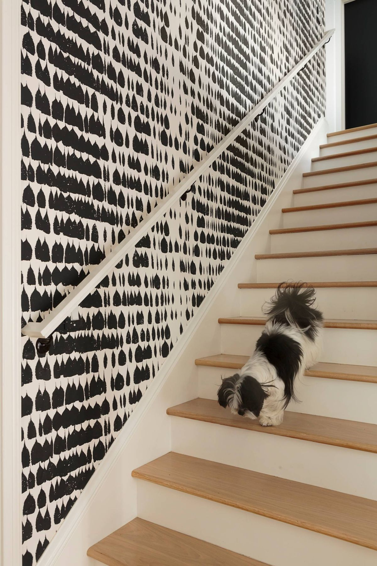 Modern contemporay staircase with black and white wallpaper wall