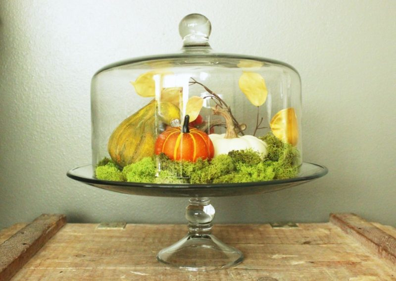 DIY Fall Pumpkin Terrarium