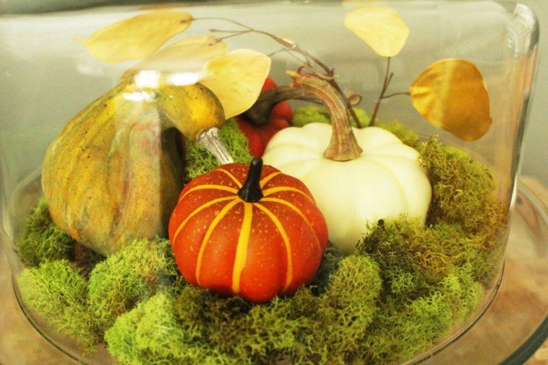 DIY Fall Pumpkin Terrarium