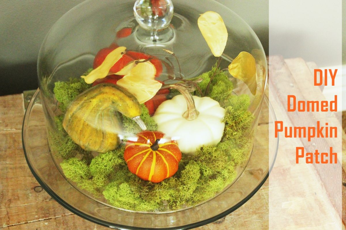Fall Pumpkin Terrarium