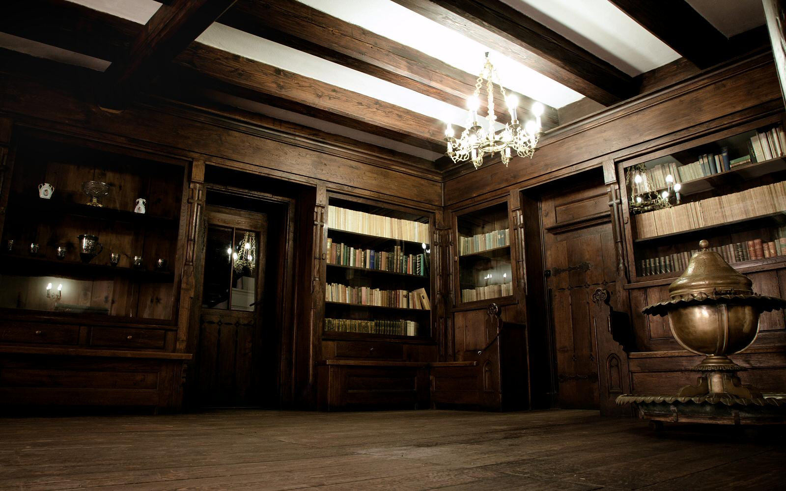 The library room is impressive and the atmosphere inside is calming and mysterious