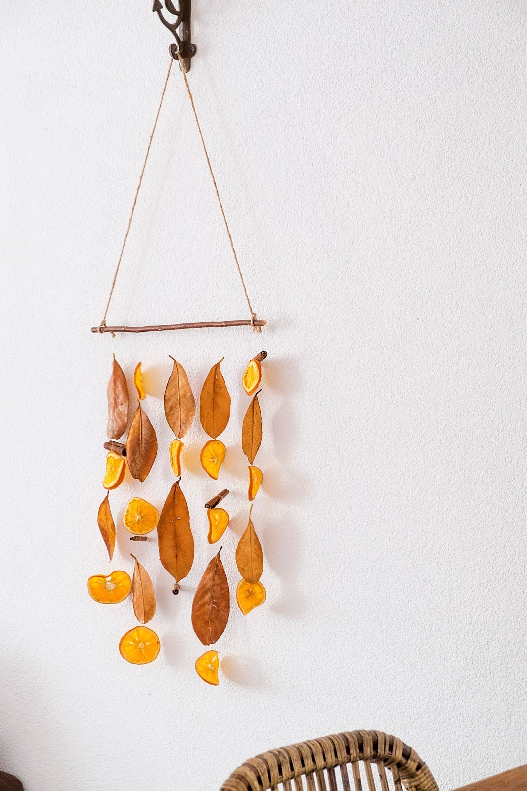 Dried Leaf and Citrus Wall Hanging