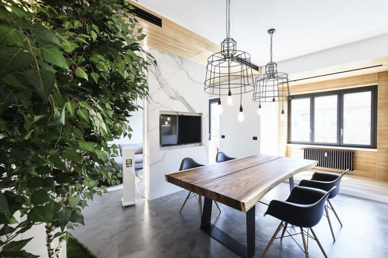 Modern Design and Trees Define Roman Apartment Used for Studio, Living Space