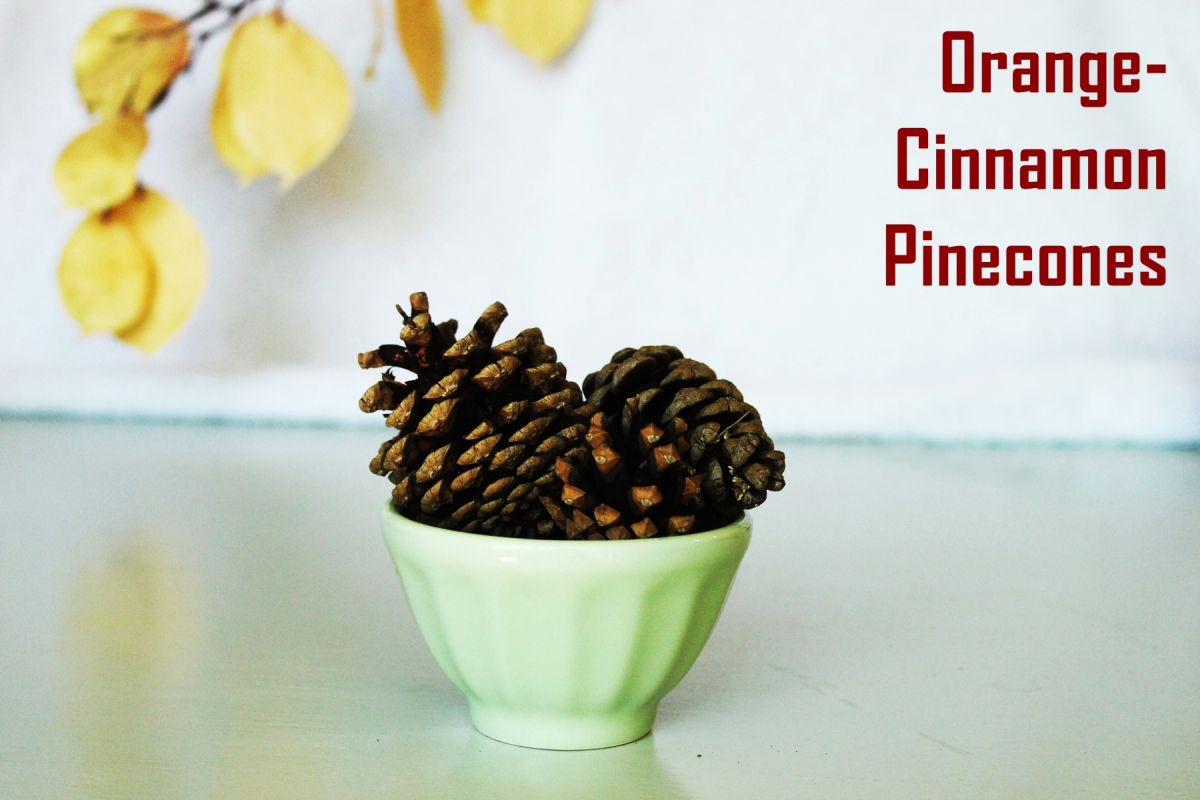 Orange-Cinnamon Pinecones.