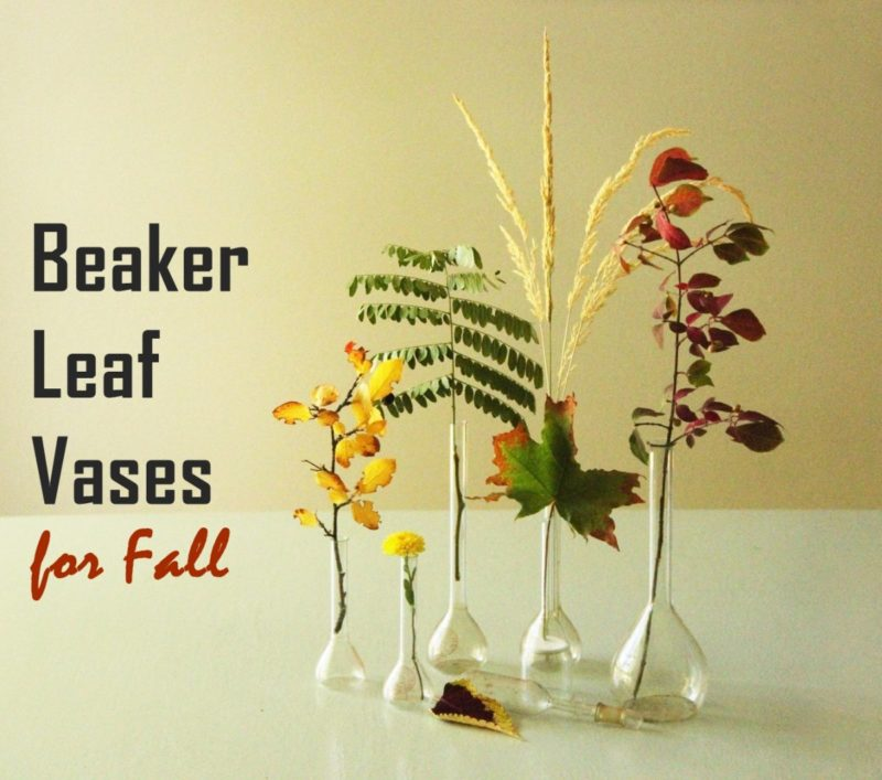 Simple Fall DIY Décor: Beaker Leaf Vases