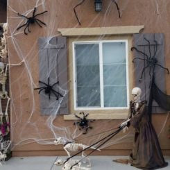 Spider and skeleton Halloween decor