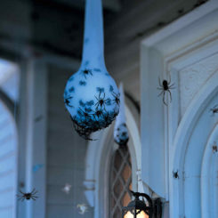 Spider eggs on the porch hanging