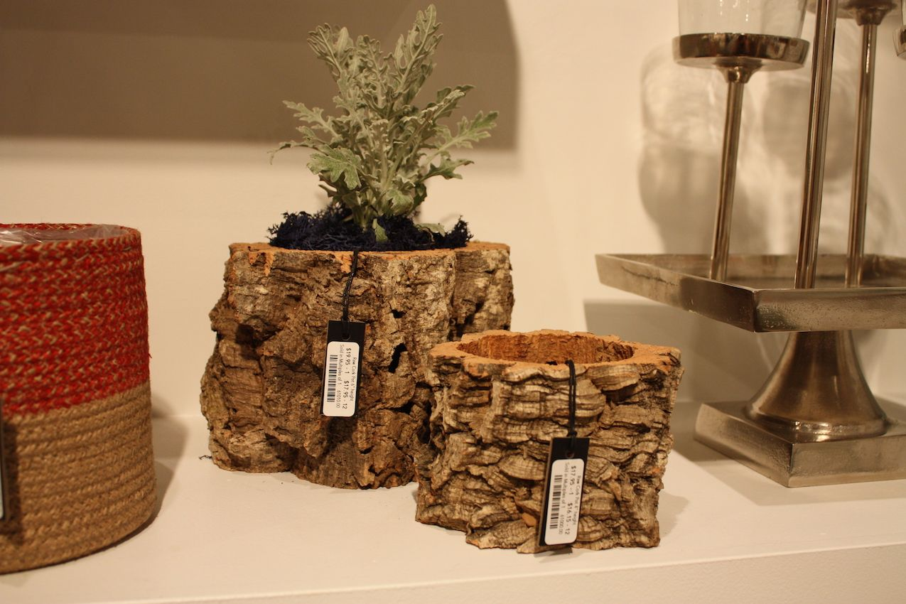 Small pots made from natural wood or bark are versatile and earthy.