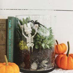 DIY Spooky Terrarium