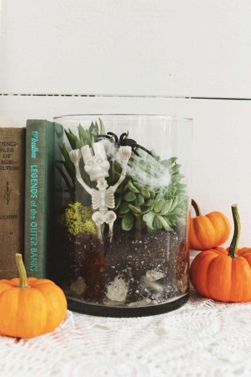 DIY Spooky Terrarium for Halloween Decor