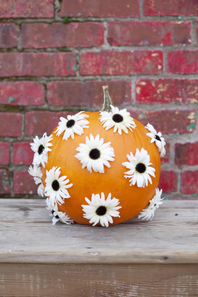 Flower Dotted Pumpkin