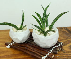 How to make beautiful geometric planters from clay