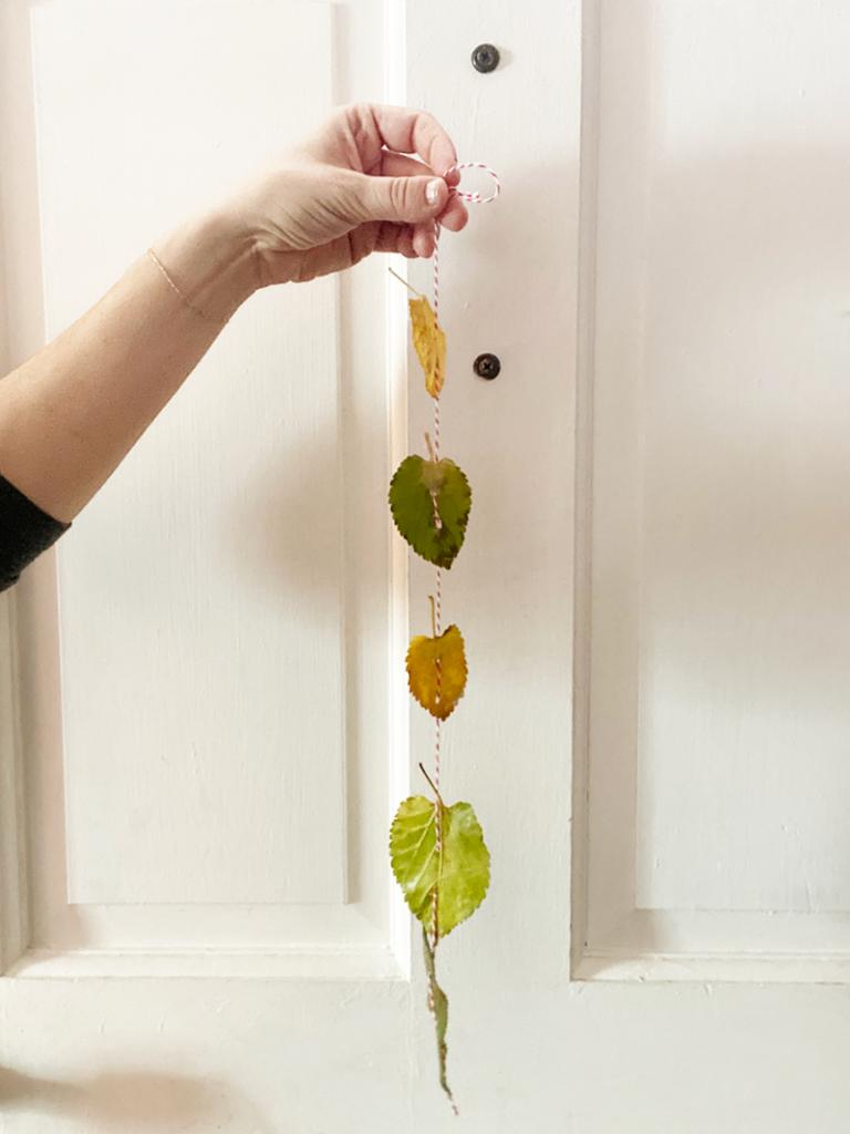 Preserved Leaf Hangings
