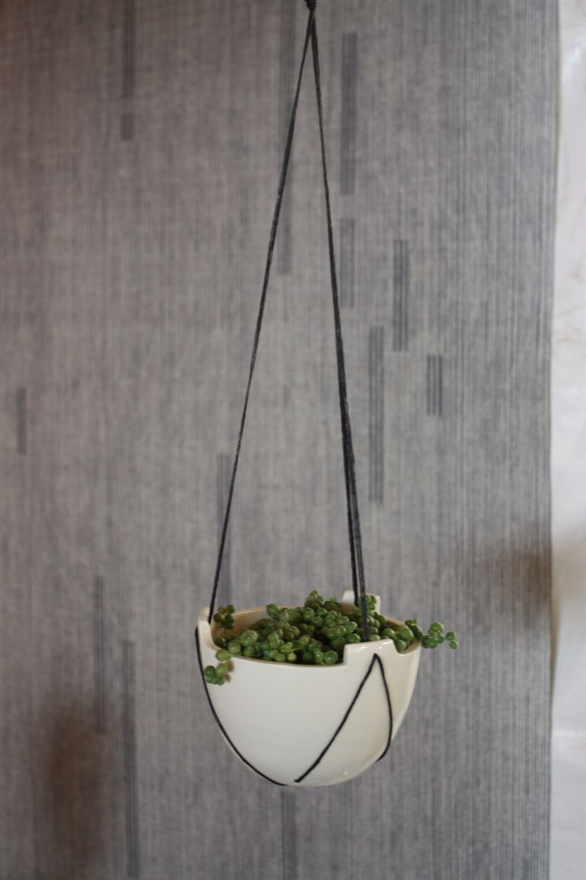 This is a modern version of the typical hanging planter.