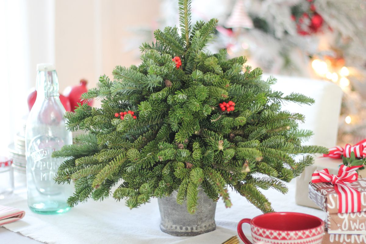 Decorate the Christmas Table with a small Tree