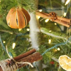Decorate the christmas tree with dried orange and cinnamoon