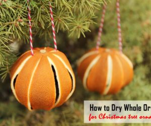 How to Dry Whole Oranges for Christmas Tree Ornaments