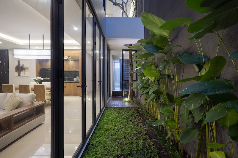 The living area has access to the small interior garden space with fresh greenery