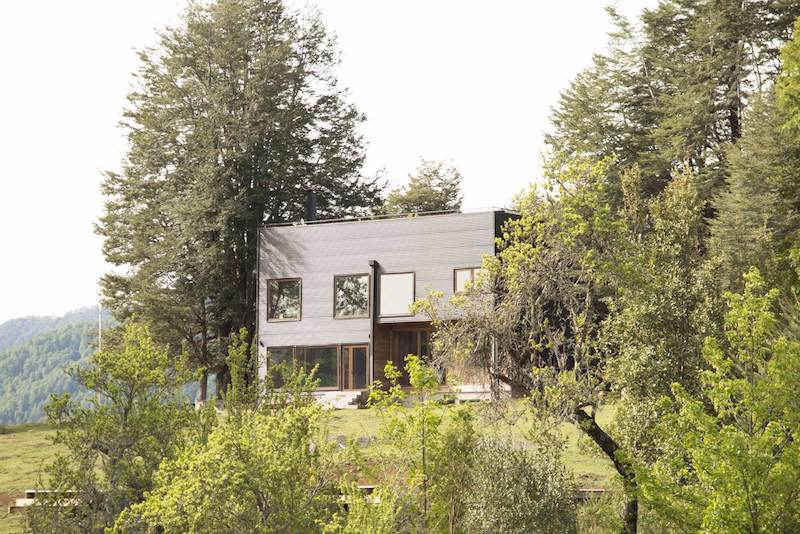Its clean, geometric form allows it to stand out but is at the same time framed by two old trees