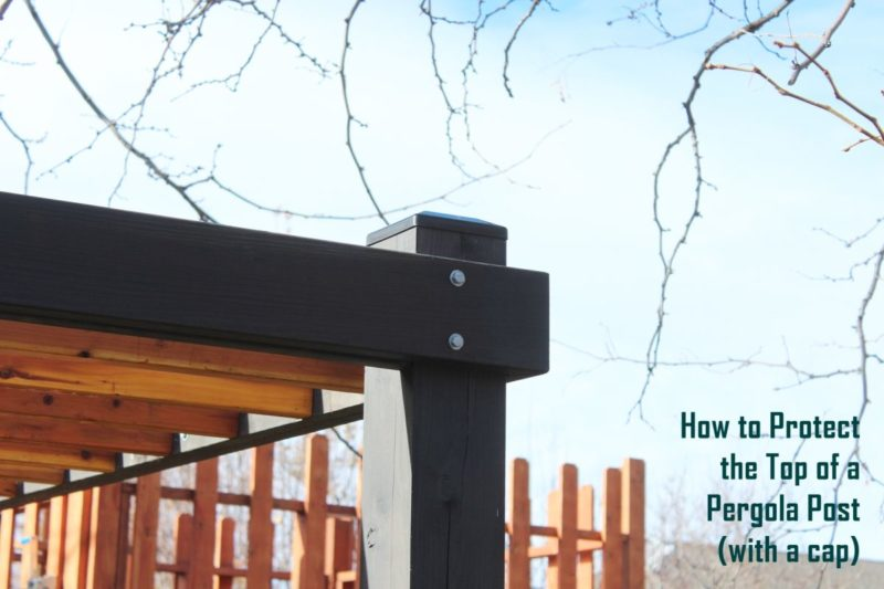 How to Cap Pergola Posts for Longevity & Weather Protection