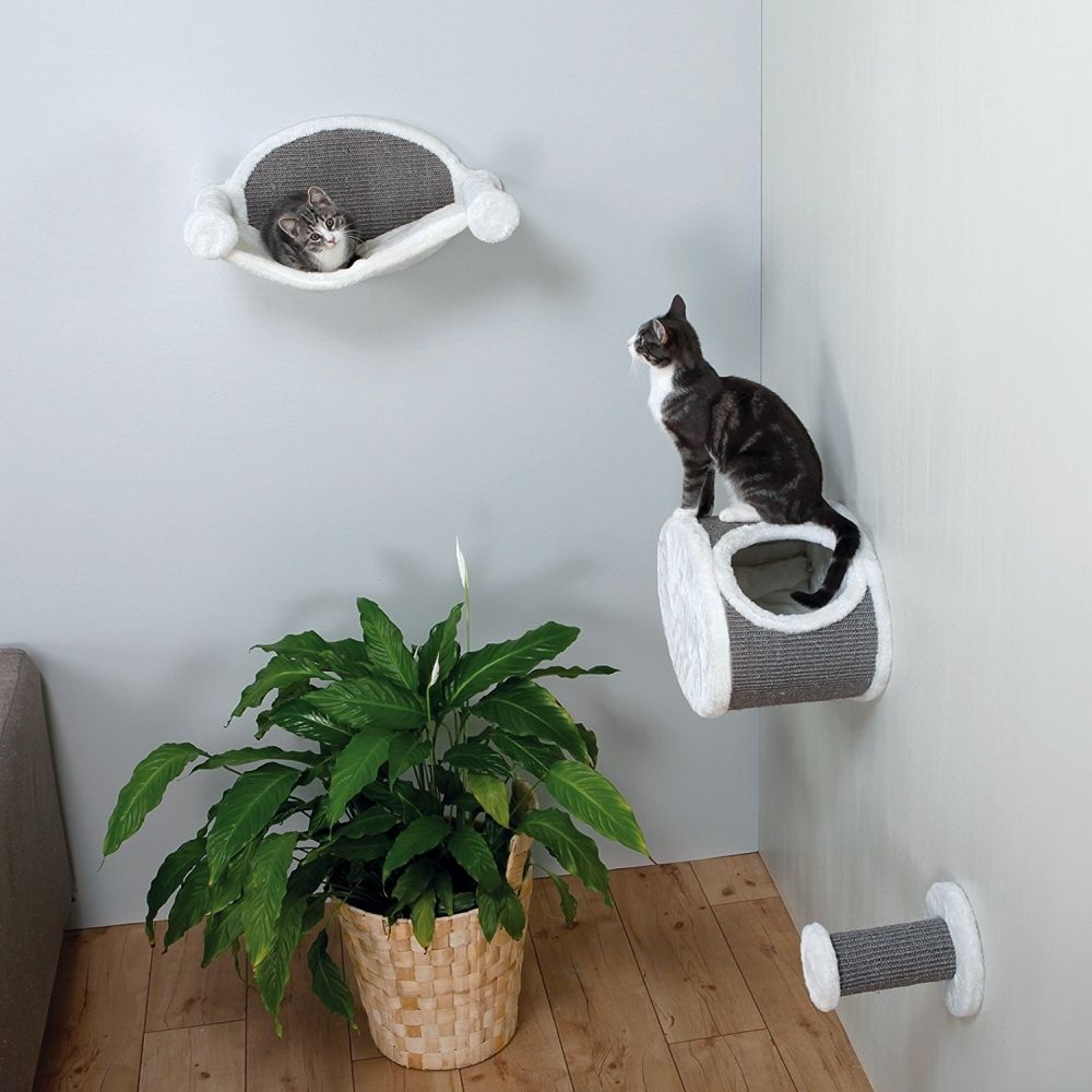 Modern Furniture For Cats And Dogs With Style And Panache