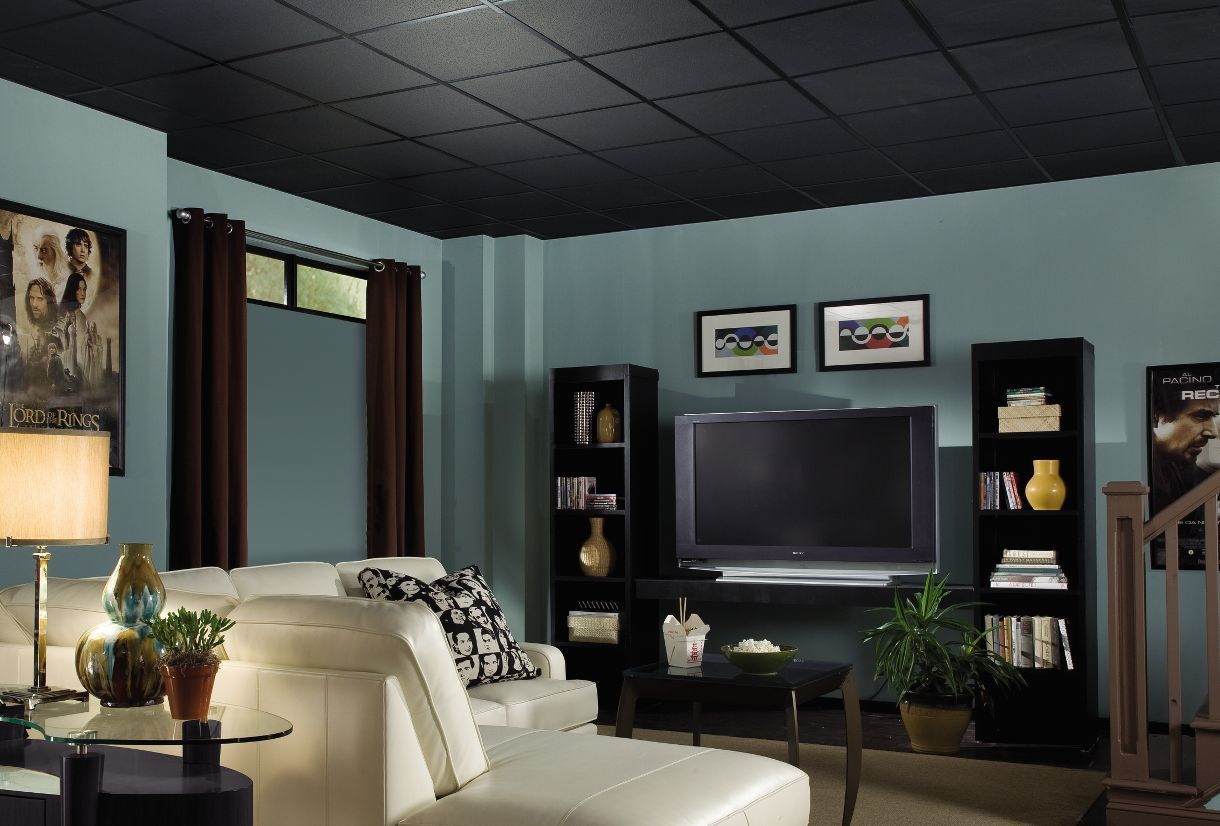 New styles and colors offer much more choice for these types of ceilings.