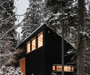 Beautiful Home And Studio Standing Among Trees And Anthills