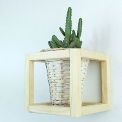 Create a Classy Cube Plant Holder