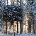The Birds Nest TreeHotel winter