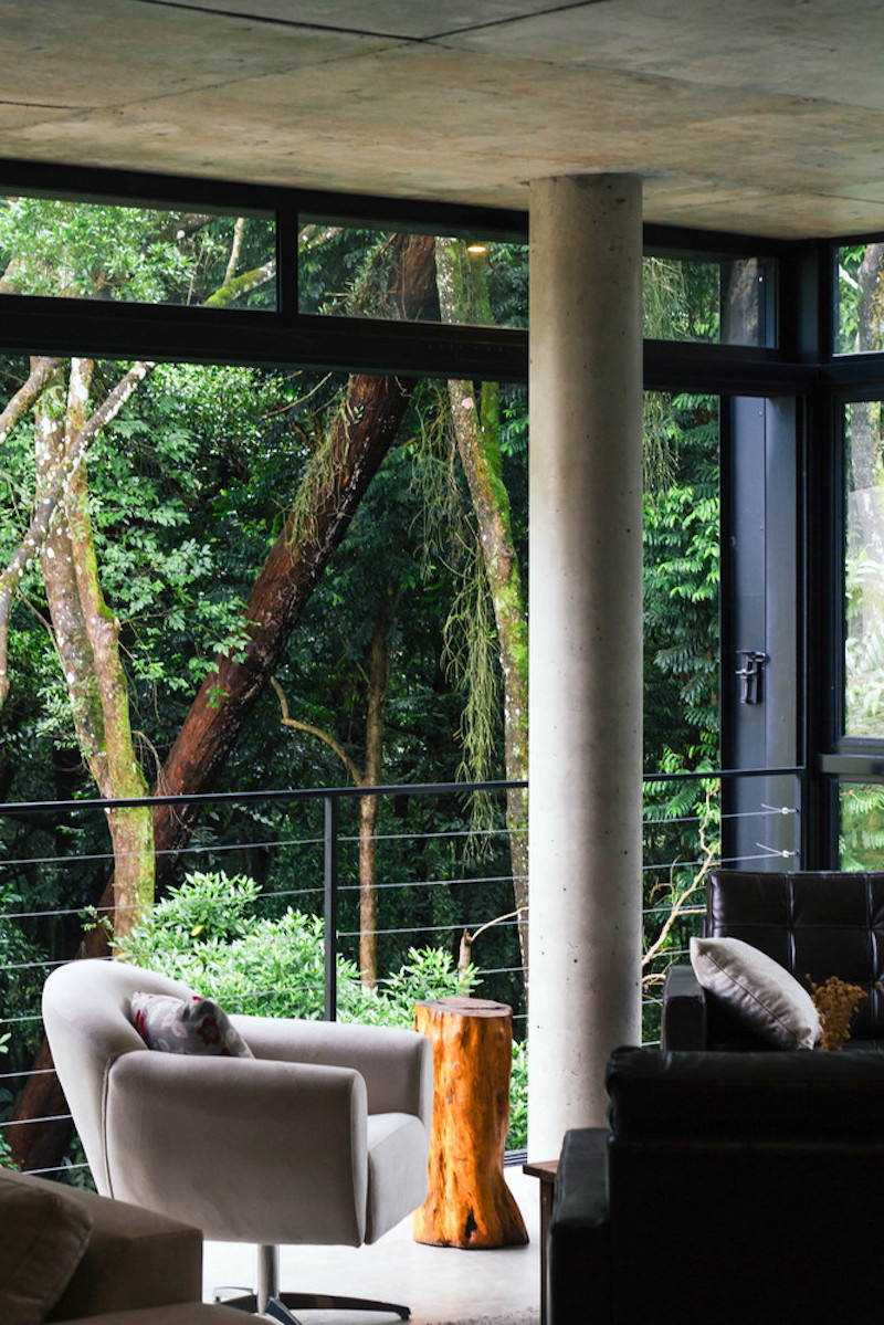 The close proximity to the forest allows the house to maintain a comfortable level of privacy while being open
