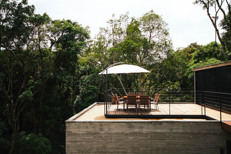 An open terrace brings the users into the forest, being sheltered between tall trees