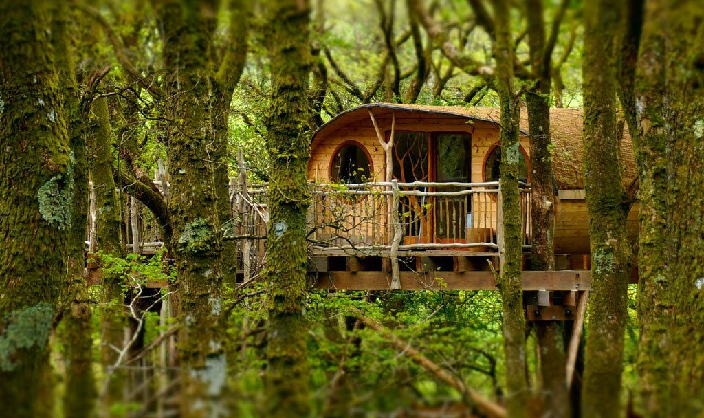 Treehouse Hotels Offer Childhood Fantasy With Adult Luxury