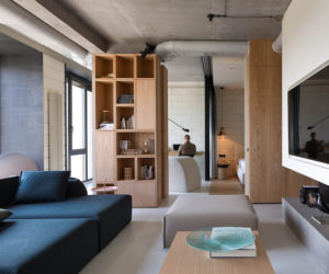 An Apartment For One Gets A Complete Makeover And An Indoor Garden