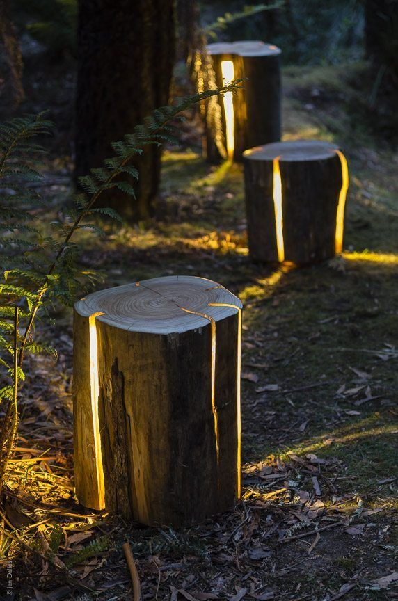 Stump Lights
