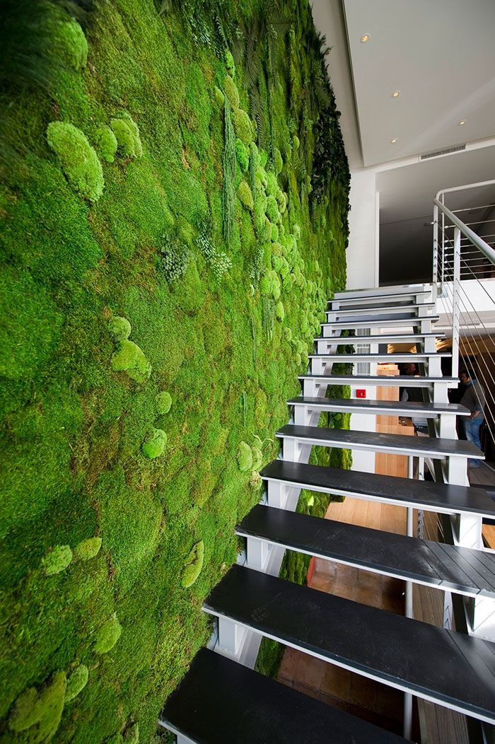A green wall of living material helps indoor air quality.
