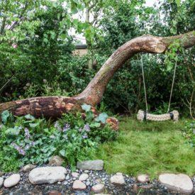 Tree swing - backyard tree hanging