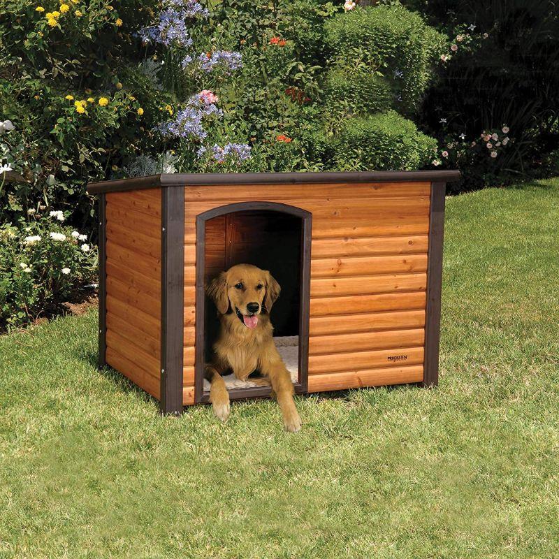 A Miniature Log Cabin