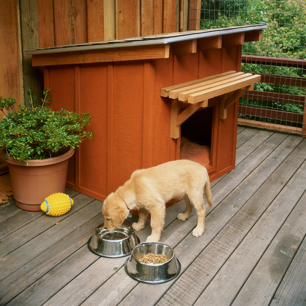 Home Design Ideas For Dogs: DIY Dog House Plans And Ideas Your Best Friend Will