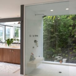 Walk in shower with large window