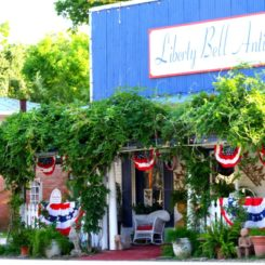 Porch covered with lush vegetation and decorated for 4th of July
